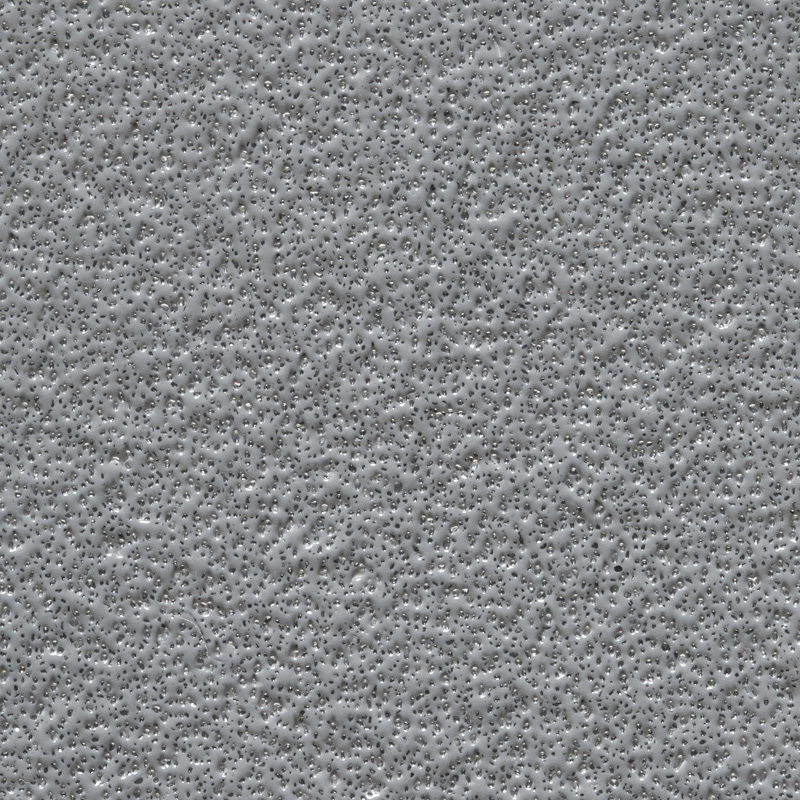LIGHT-GRAY